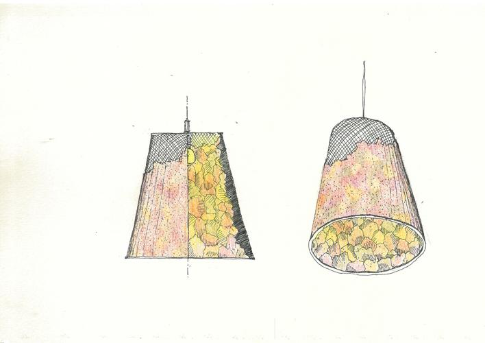 bril_sakan_lamp